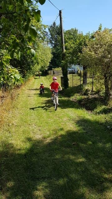 Děti si hrají na kole | Indoorfun.cz