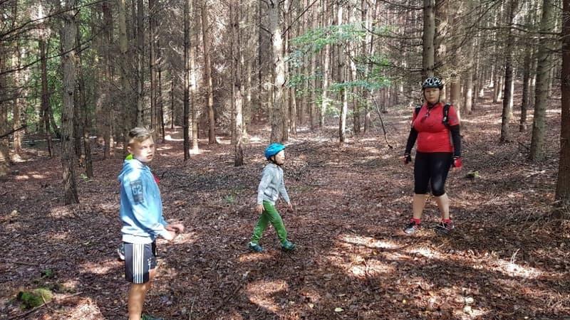 Výlet s dětmi do lesa | Indoorfun.cz